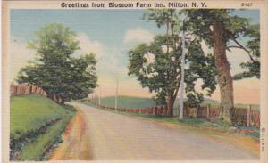 New York Greetings From Blossom Farm Inn Milton Curteich