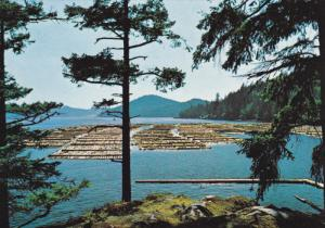 VANCOUVER, British Columbia, Canada, 1950-1970's;  Log Booming Grounds