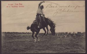 Cow Boy on a Bucking Bronco Postcard