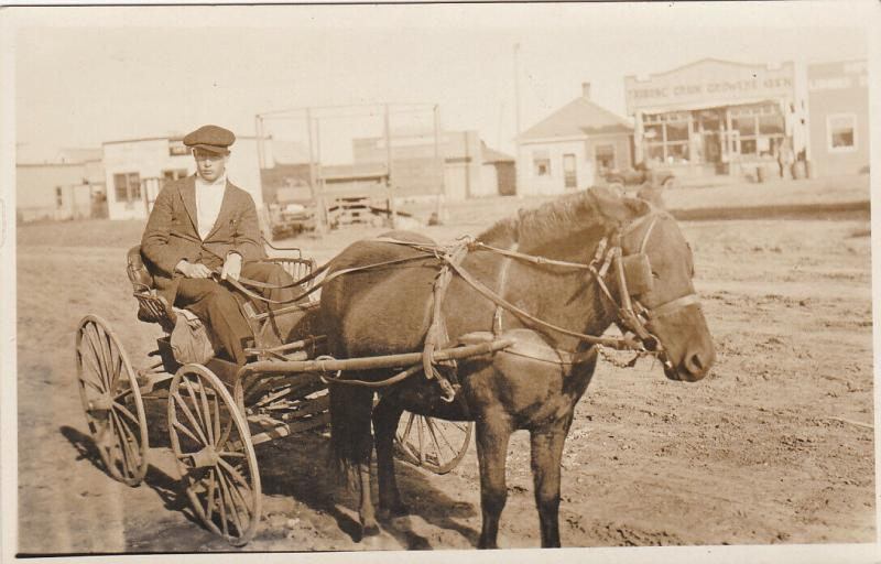 RP, Young Man Riding On A Pony Wagon, The Tribune Grain Growers Association Stor