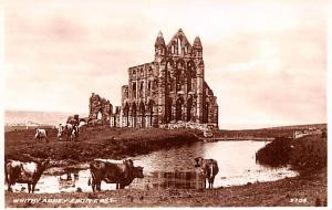 United Kingdom, Great Britain, England Whitby Abbey From East  Whitby Abbey F...