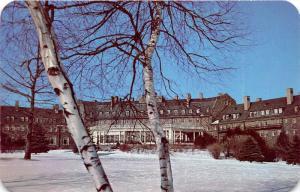 Pocono Mountains Pennsylvania~Skytop Lodge~Snow on Ground~Birch Trees~1950s Pc
