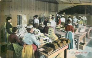 Women packing figs Calimyrna manufactory United States vintage postcard