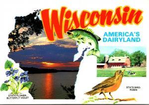 Wisconsin America's Dairyland State Flower Butterfly Violet & State Bird...