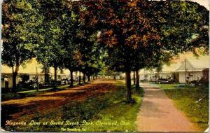 Cleveland Ohio~Euclid Beach Park~Magnolia Lane Cottages~Campers~c1910 Postcard