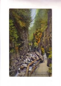 Pathway, Flume Gorge, White Mts, New Hampshire, Flume Reservartion, 1938 CT B...