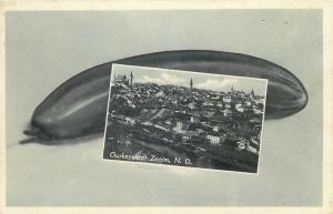 Znojmo Znaim cucumber vegetable & panorama Czech Republic rare 1940 postcard