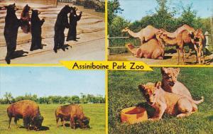Canada Manitoba Winnipeg Assiniboine Park Zoo