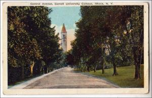 Central Ave. Cornell University Campus, Ithaca NY
