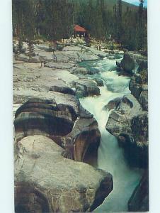 Pre-1980 NATURE SCENE Jasper Park Alberta AB AD3680