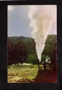 CA Steamboat Geyser The Big Geysers Resort Cloverdale, California Postcard