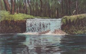 Ohio St Clairsville By A Waterfall A Spot Of Rare Beauty-Albertype