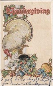 THANKSGIVING, PU-1906; Wild Turkey, Cherub, Cornucopia