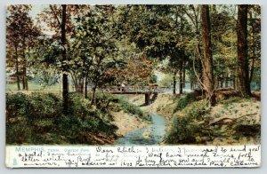 Memphis TN Couple Meets Deer on Footbridge Nestled in Overton Park~TUCK 1906 UDB