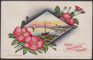 Best Birthday Wshes,Flowers,Scene Postcard