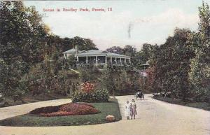 Illinois Peoria Scene In Bradley Park 1908