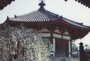 Postal 61556 : Dream Hall in Horyuji Temple Nara