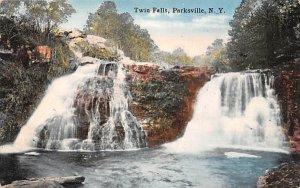 Twin Falls Parksville, New York