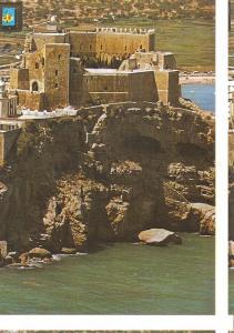 Postal 045820 : Peñiscola (castellon). Castillo