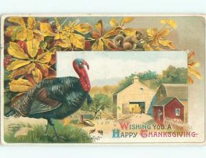 Divided-Back THANKSGIVING SCENE Great Postcard AA0476