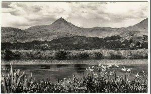 Caernarvonshire; Cnicht & Afon Glaslyn, Nr Portmadoc 18099 RP PPC Unused, c 50's