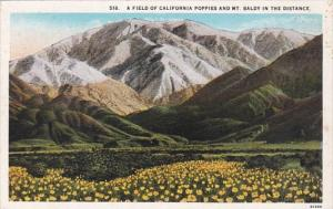 California A Field Of California Poppies and Mt Baldy In The Distance