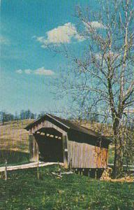 Covered Bridge By An Old Sycamore Vermont