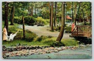 Reading PA~Mineral Spring Park~Lady in Hammock~Girls on Bridge~Shelter~c1910