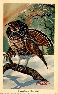 Pennsylvania State Bird Ruffed Grouse