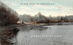 The Spring Hurleyville NY 1910