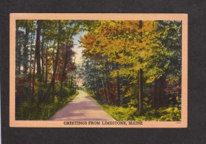 ME Greetings From Limestone Maine Linen Postcard