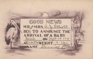 BIRTH ANNOUNCEMENT, PU-1913; Good News, Stork