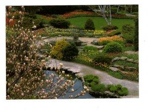 Royal Botanical Gardens, Blossoms, Hamilton, Ontario Large 5X7 Postcard