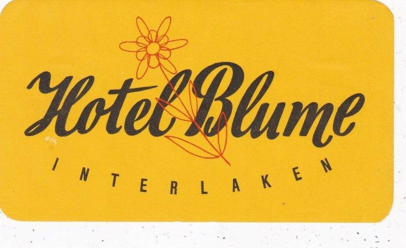 Switzerland Interlaken Hotel Blume Vintage Luggage Label sk4283