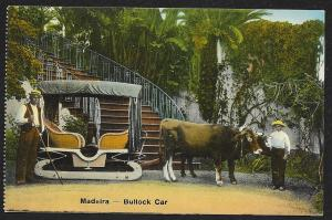 Bulls Pulling Bullock Car Madeira SPAIN Unused c1910s