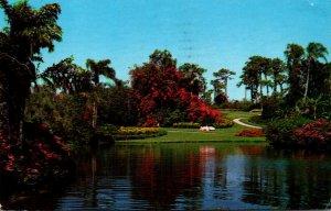 Florida Cypress Gardens Blossom Time 1963