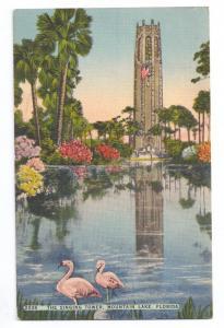 Singing Tower Mountain Lake Florida Pink Flamingo