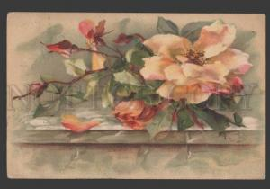 115887 Pink ROSES on Wall by KLEIN Vintage colorful PC