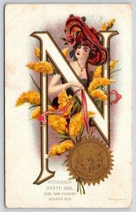 G Howard Hilder Nebraska State Girl~Art Nouveau Large Letter N~'09 Platinachrome