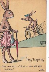 Griff Military Propaganda Humour Dressed Rabbit Nog Laping sk7402