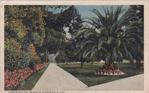 California Sacramento View In Capitol Grounds