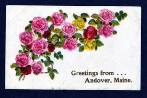 ME Greetings From Andover MAINE Embossed Flowers OLD