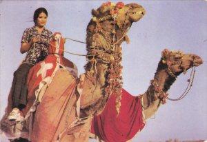 Camel for riding , Pakistan , 50-70s