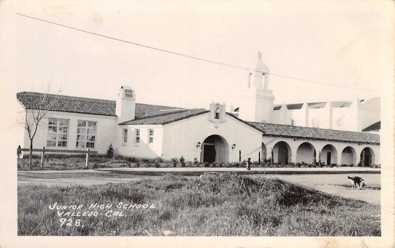 Vallejo California~Junior High School~Dog Sniff Puddle in Street~1940 RPPC