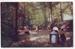 P432 JL old postcard picnic area eastman springs benton harbor mich