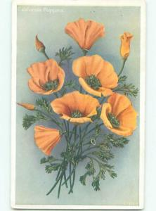 Very Old Foreign Postcard BEAUTIFUL FLOWERS SCENE AA4644