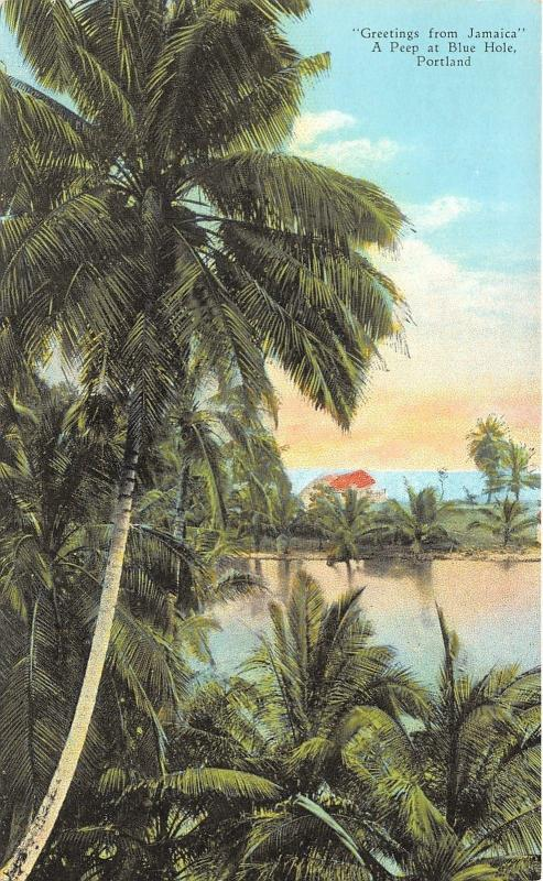 Ocho Rios Jamaica~A Peep at Blue Hole~Beautiful Scene from Behind Palm~c1910 Pc