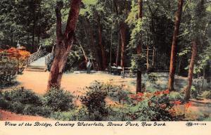 Bronx Park New York~Footbridge Crossing Waterfalls~1911 To Peek of Gloversville