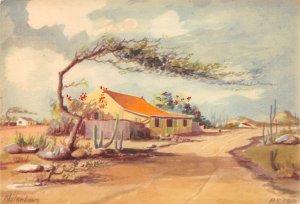 Native House With Divi-Divi Tree, Notenboom Aruba Unused