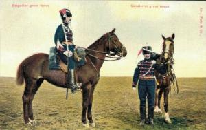 Military postcard Brigadier groot tenue Cavalerist groot tenue 02.13